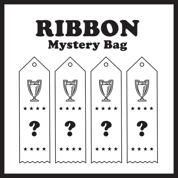 Mystery Ribbon Bag (Set of Four)