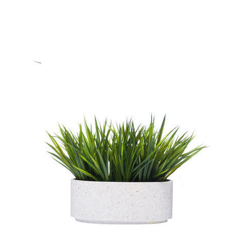 GRASS IN WHITE OVAL