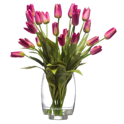 18 Fuchsia Tulips Waterlike