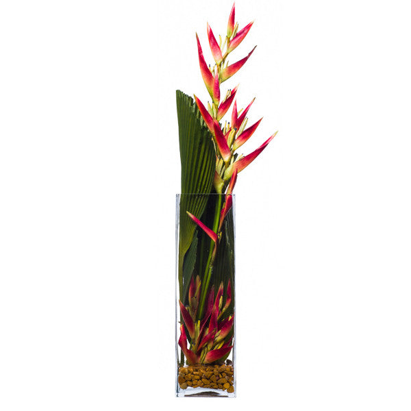 Fan Palm/Heliconia Waterlike