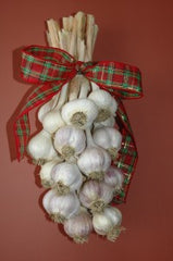 Bundle Garlic to be shipped