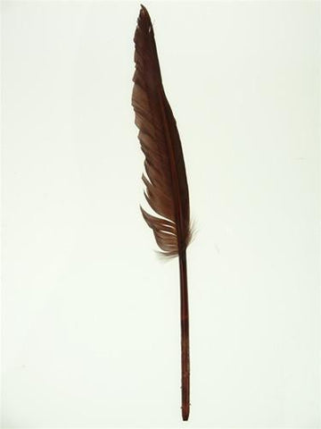 Duck Feather Decorative, 14-inch, 10-Piece, Brown