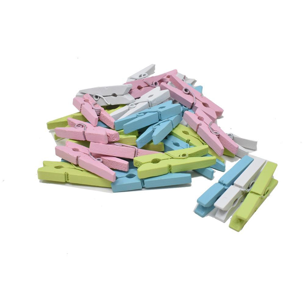 Mini Wood Clothespin Assortment, Pastel, 1-1/8-Inch, 32-Piece
