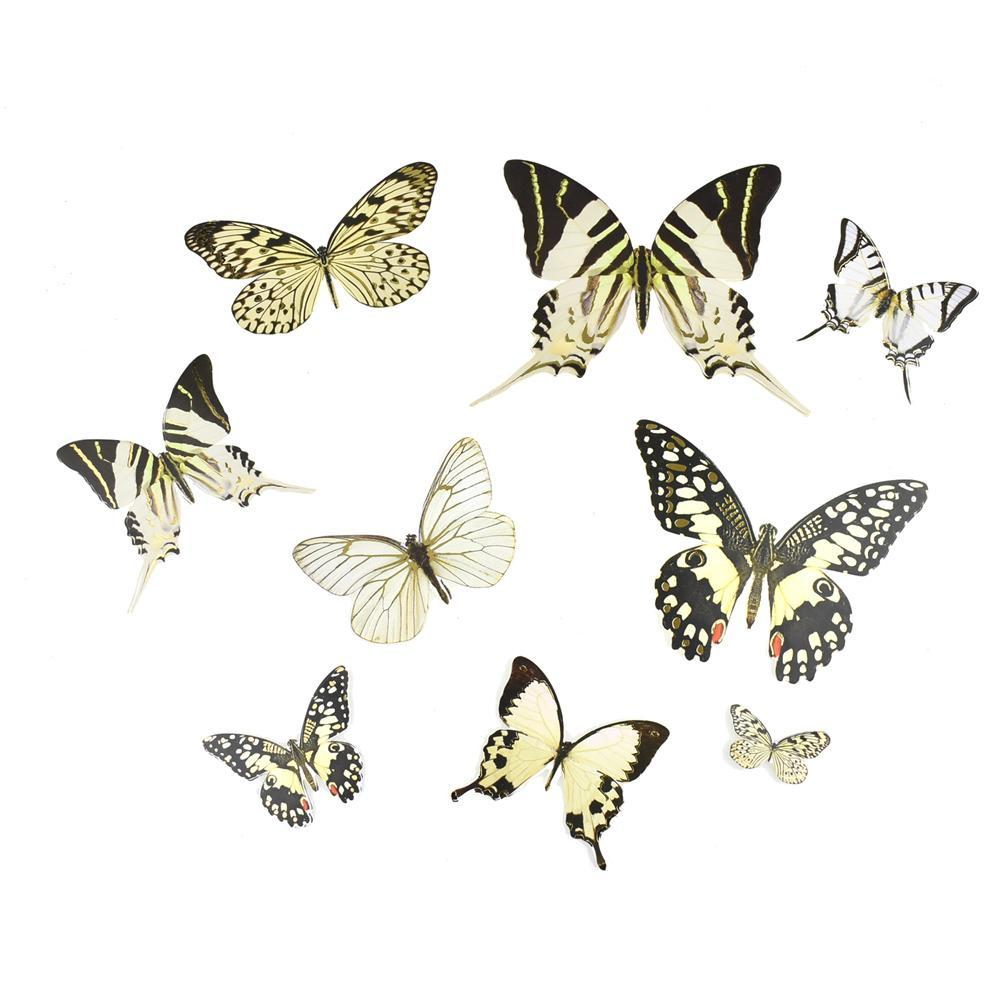 Butterfly Paper Craft Die Cuts, White, 35-Piece