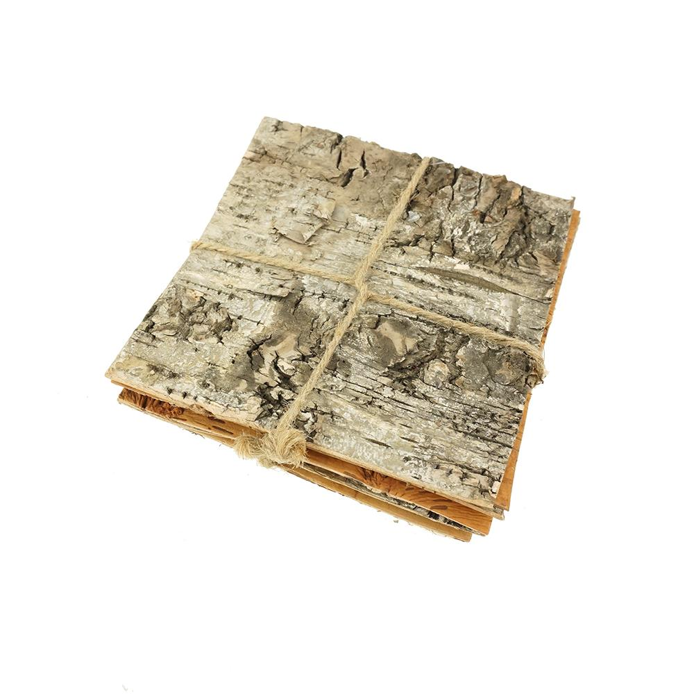 Square Birch Bark Bundle, 4-3/4-Inch, 6-Count