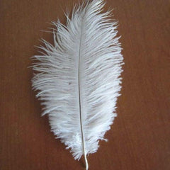 Ostrich Feather Decorative Centerpiece, 15-Inch, 1-Piece