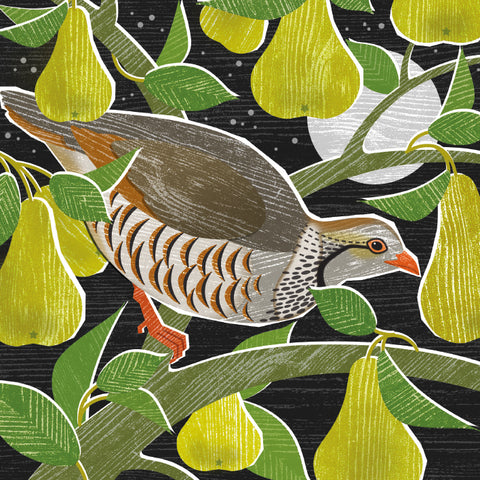 Partridge in a Pear Tree Christmas Card 8 Pack