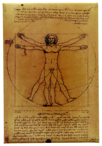 Vitruvian Man Fridge Magnet