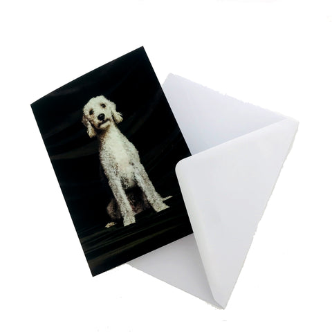 Guinness the Dog Greetings Card