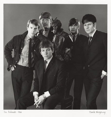 The Animals (John Steel; Chas Chandler; Eric Victor Burdon; Dave Rowberry; Hilton Stewart Paterson Valentine) Mounted Print