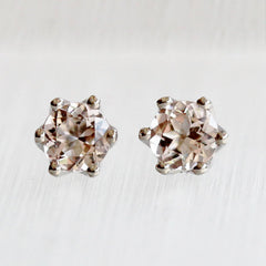 Snowdrop 6 Prongs Studs