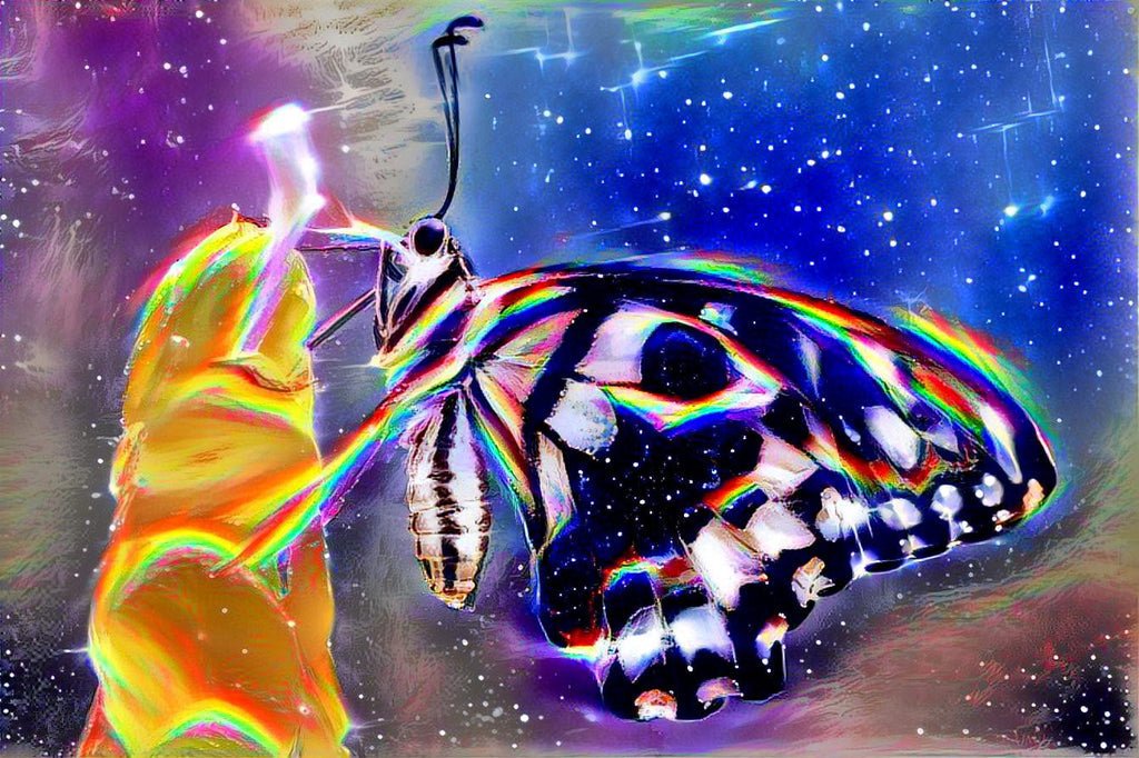 Butterfly Psychedelic Art