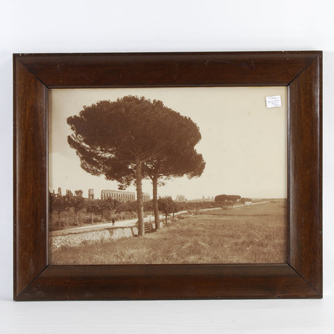 Appian Way Photograph