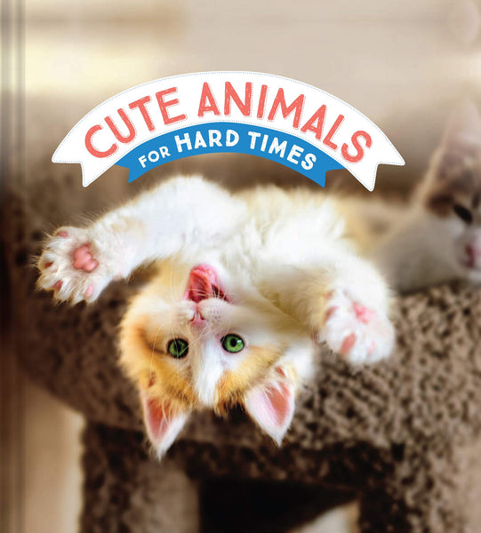 Cute Animals for Hard Times (Hardcover)