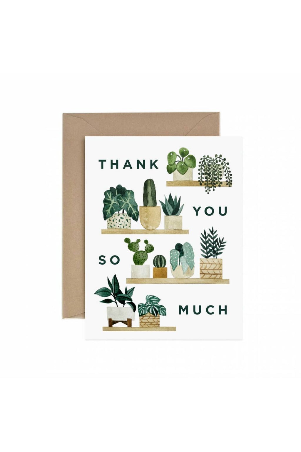 Paper Anchor Co. Thank You Shelf Greeting Card