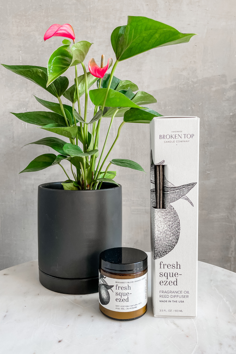 Broken Top Fresh Squeezed Candle + Diffuser Gift Set
