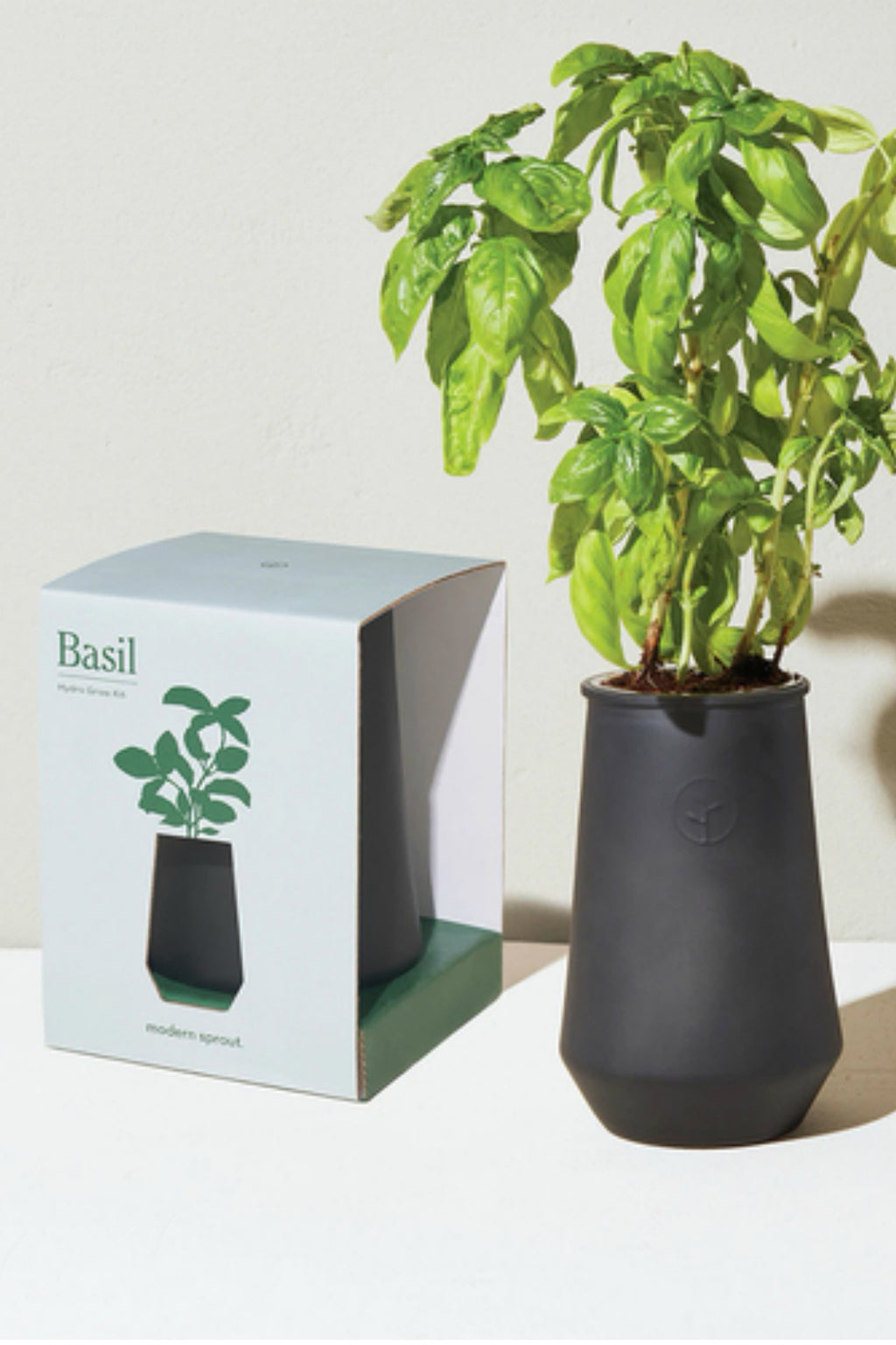 Modern Sprout Black Tapered Tumbler Hydroponic Grow Kit - Basil