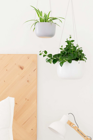 Peach & Pebble Hanging Ceramic Planter in White