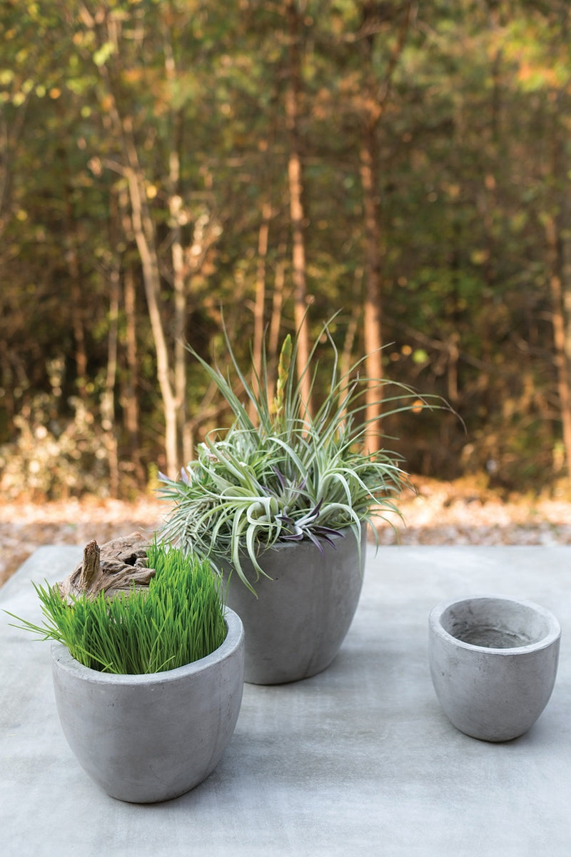 Accent Decor Newport Concrete Pot
