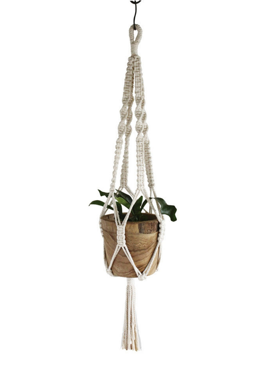 EcoVibe Style - Time Concept Macrame Plant Hanger No. 3