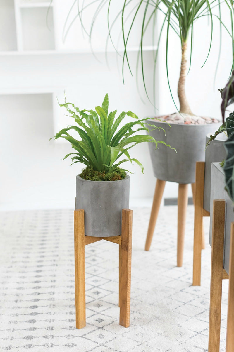 Berlin Concrete + Wood Planter