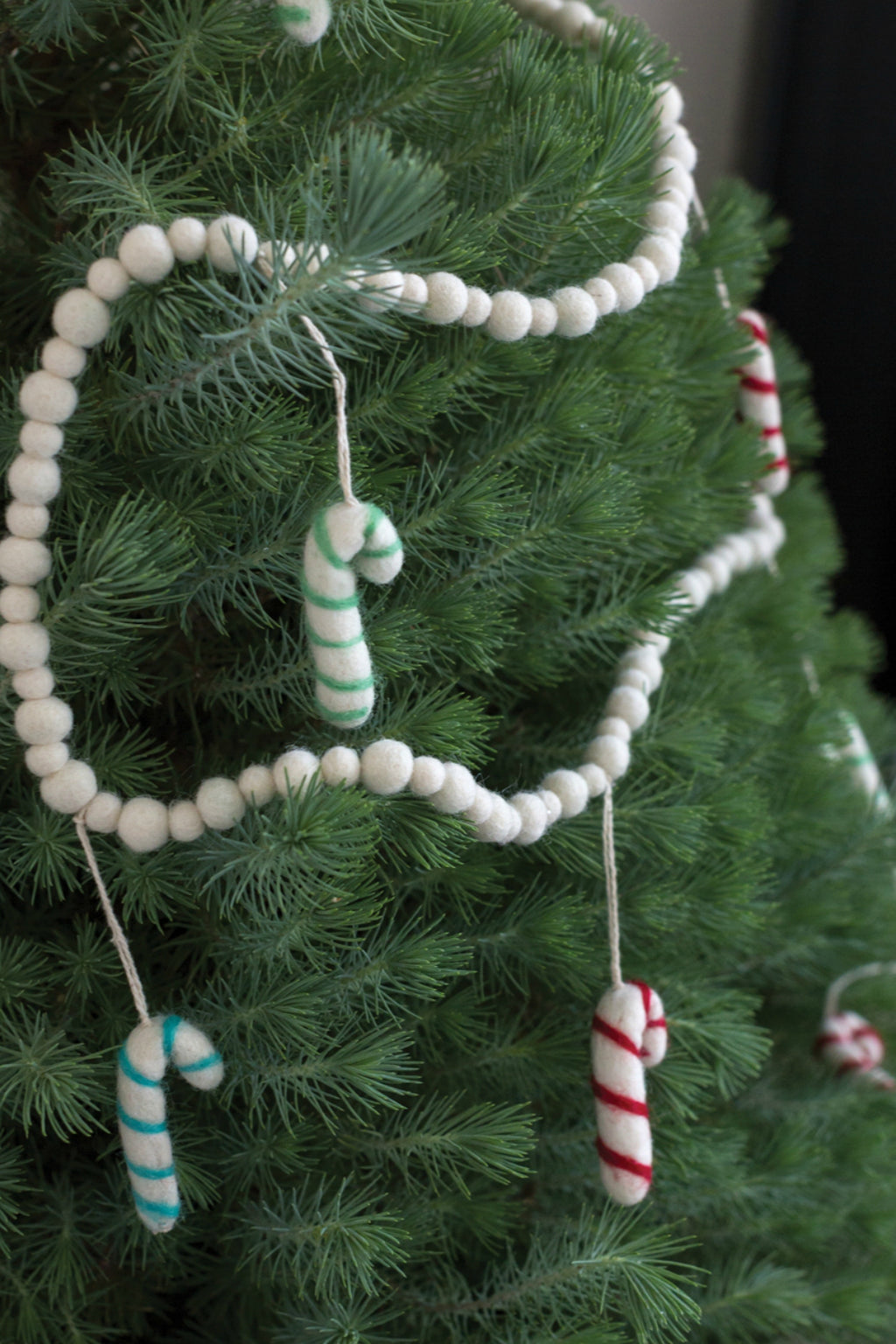 Accent Decor Candy Cane Garland