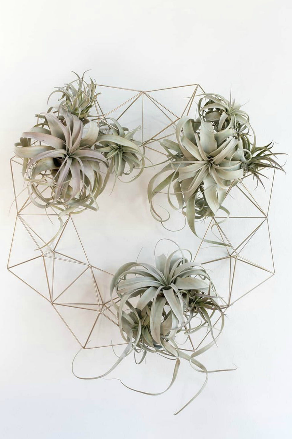 Accent Decor Brass Wire Geo Wreath