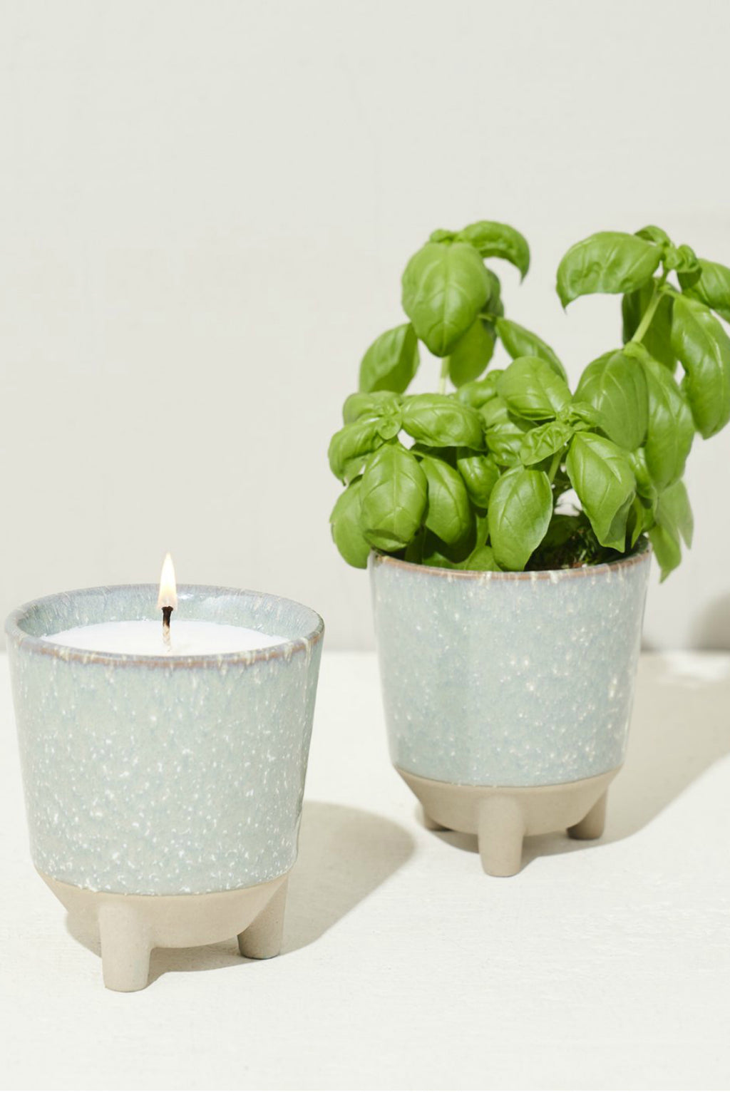 Modern Sprout Glow & Grow Kit - Basil Herb Garden