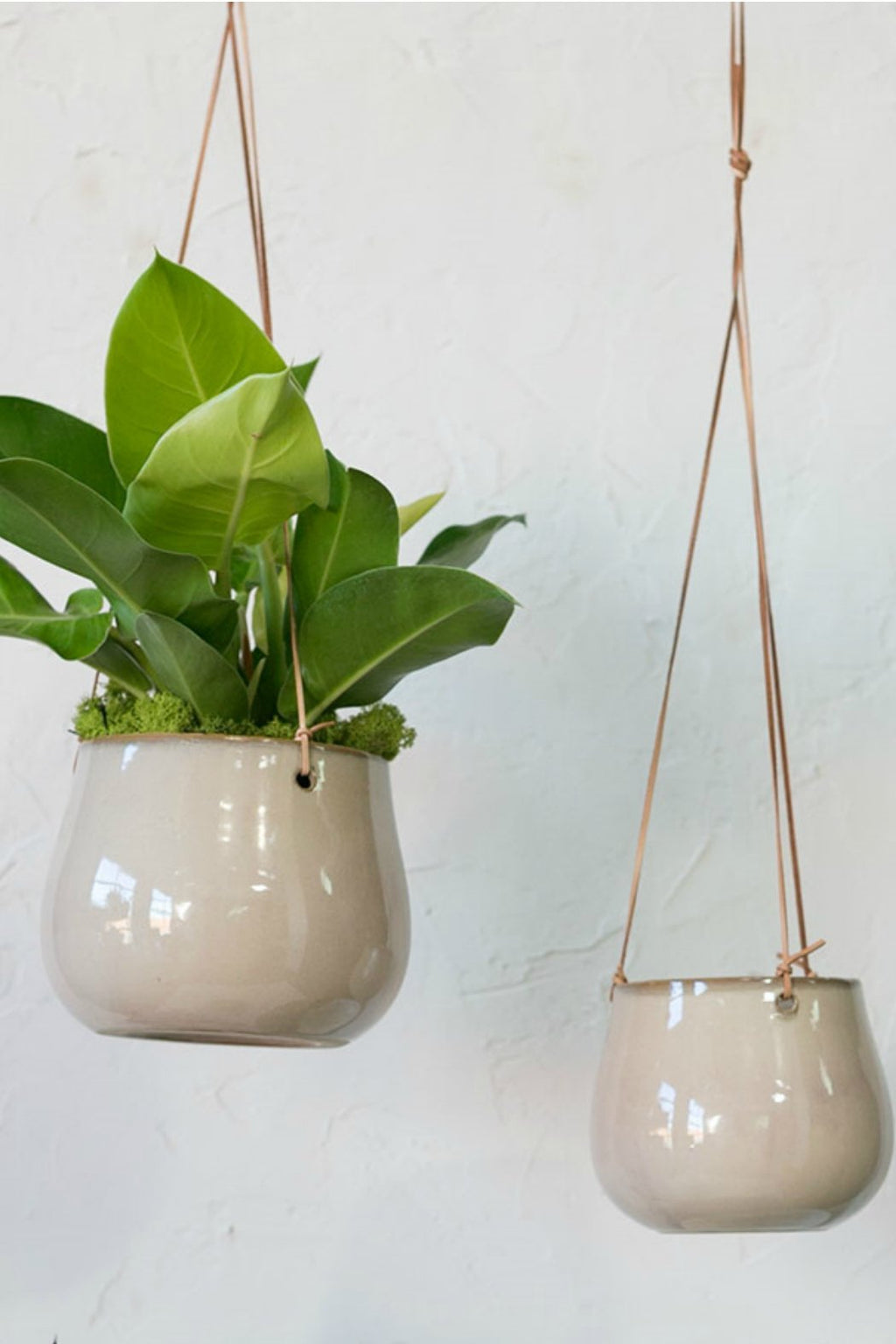 Accent Decor Lelay Hanging Planter