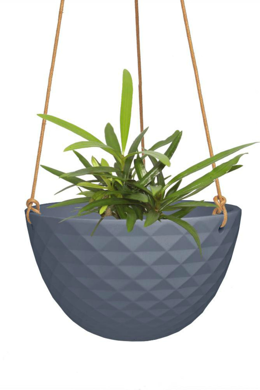 Chive Mini Mofo Hanging Dish Planter, blue