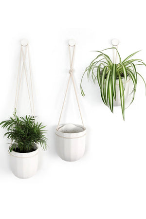 WallyGro Loop Planter White