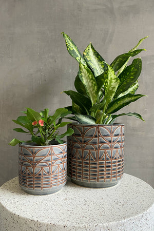 Accent Decor Navarro Pot