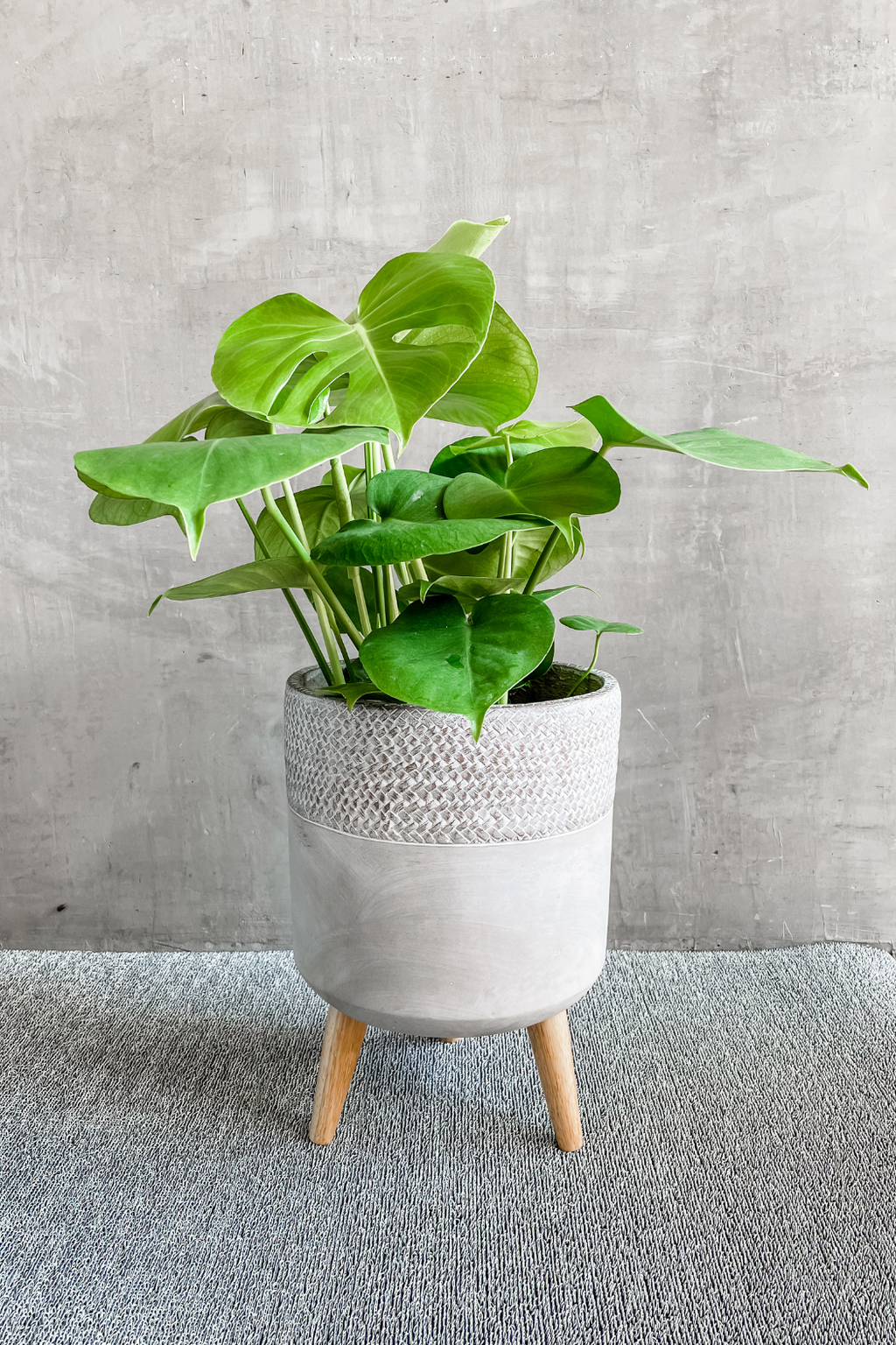 Creative Co-op Cement Planter w/ Wood Legs