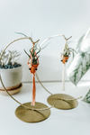 Oh the Greenery Mini Hanging Pot + Crescent Stand
