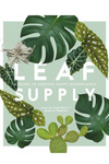 Leaf Supply: A Guide to Keeping Happy House Plants  By Lauren Camilleri and Sophia Kaplan