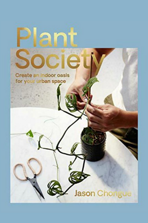 Plant Society: Create an Indoor Oasis for Your Urban Space  By Jason Chongue