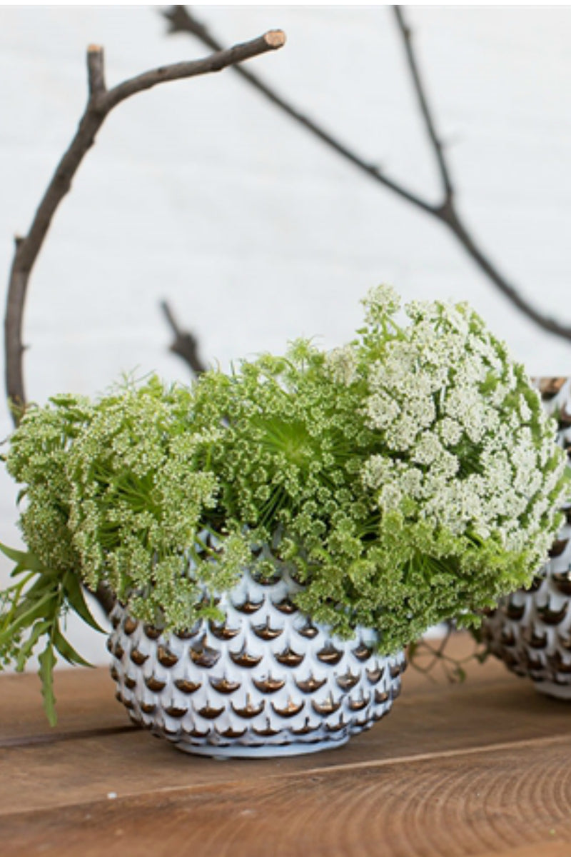 Accent Decor Reign Pot