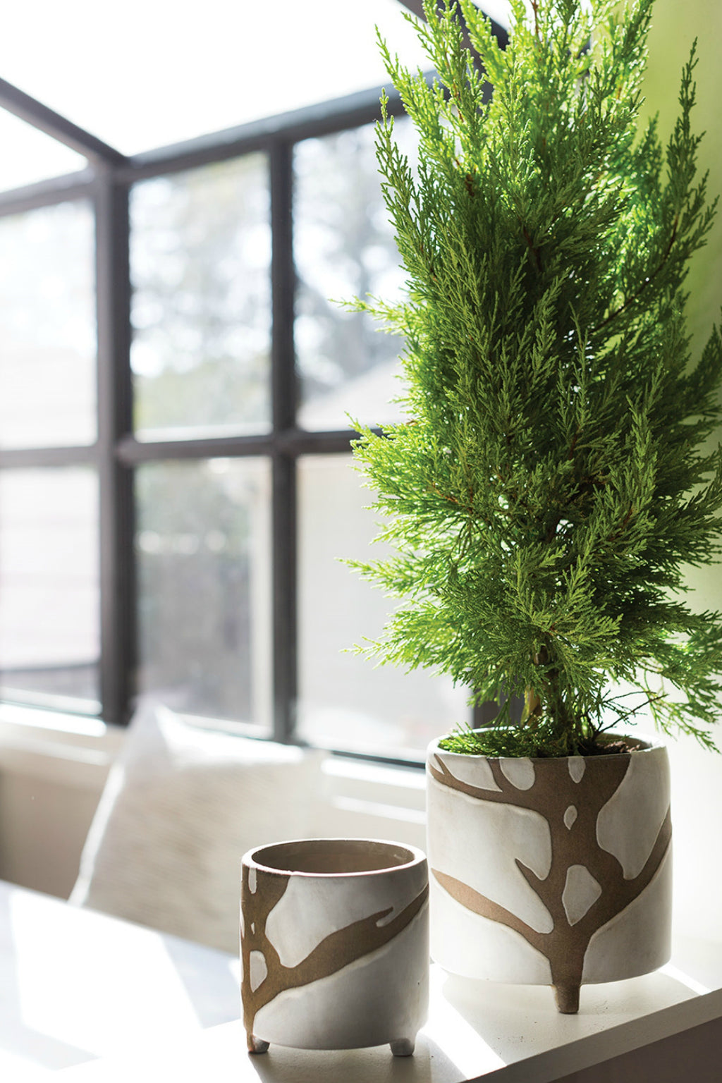 Accent Decor Sprig Pot