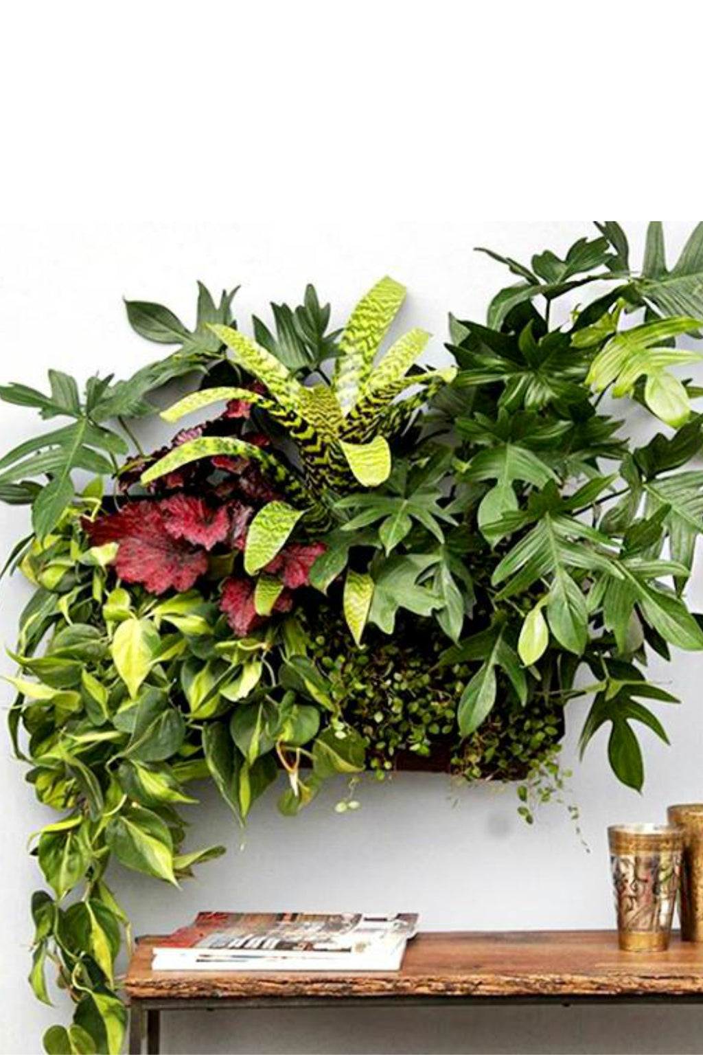 Wally Pocket Planter