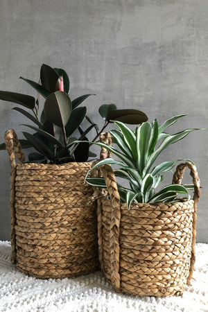UMA Water Hyacinth Handled Basket