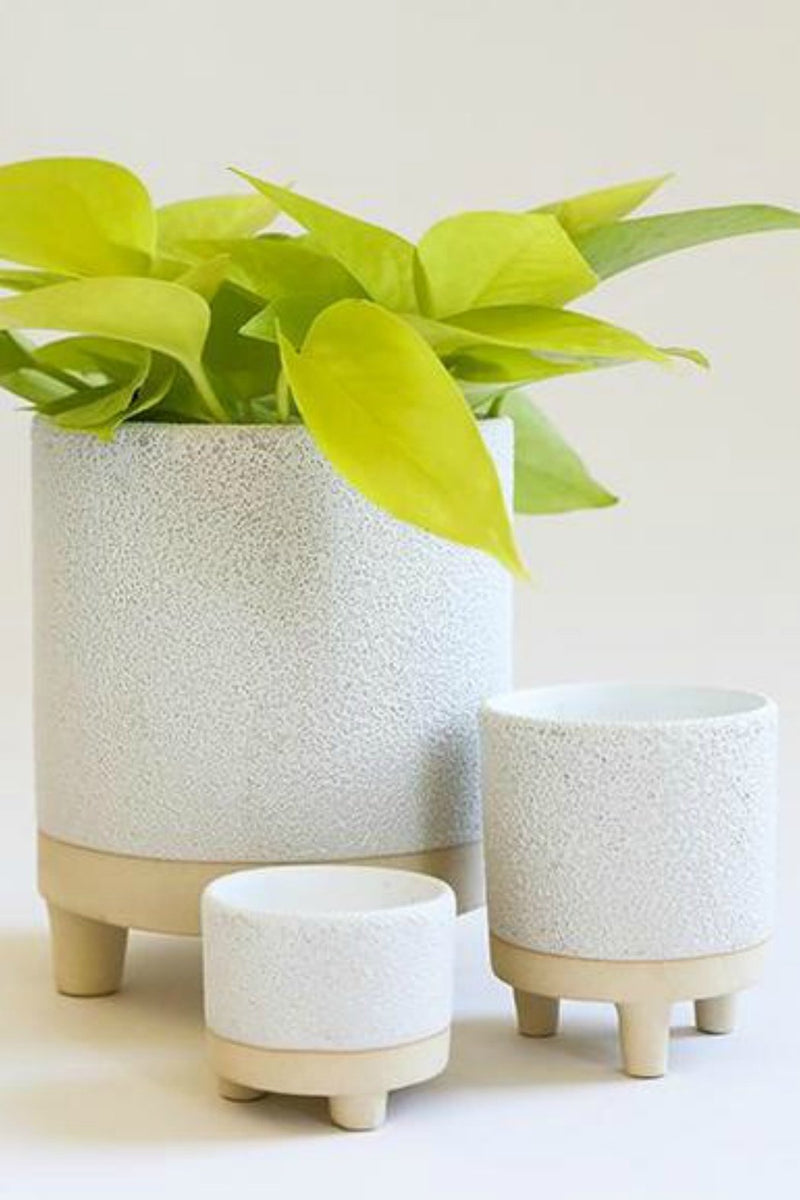 Accent Decor Delray Footed Pot