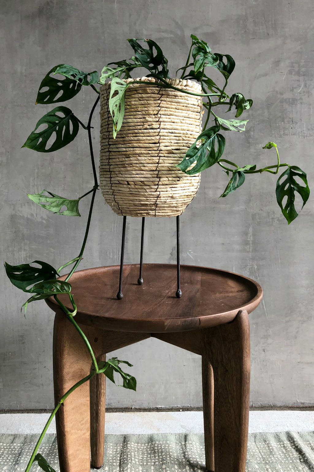 Bloomingville  Corn Rope Basket Plant Stand