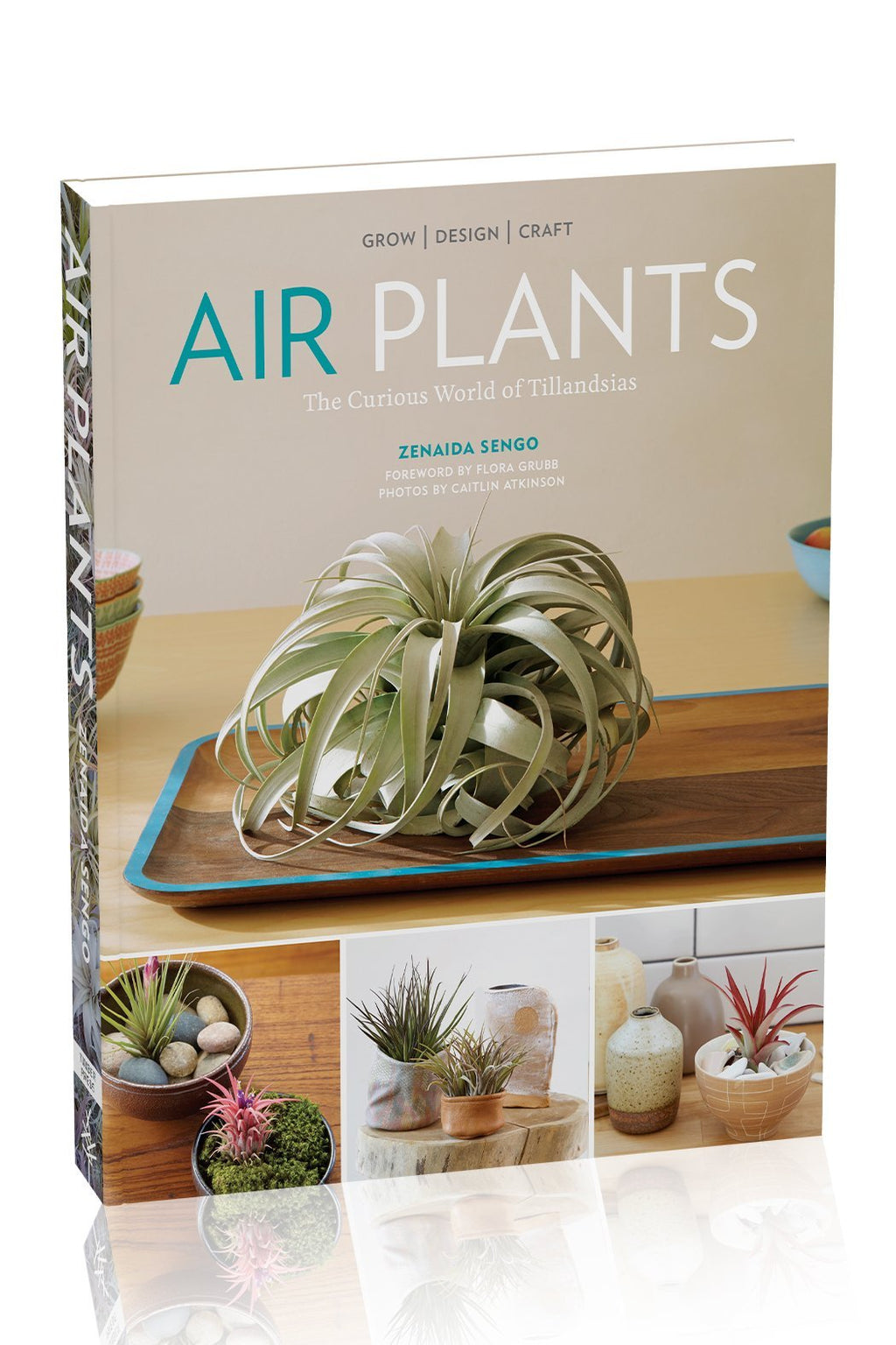 EcoVibe Style - Air Plants The Curious World of Tillandsias By Zenaida Sengo Photographs by Caitlin Atkinson, Book