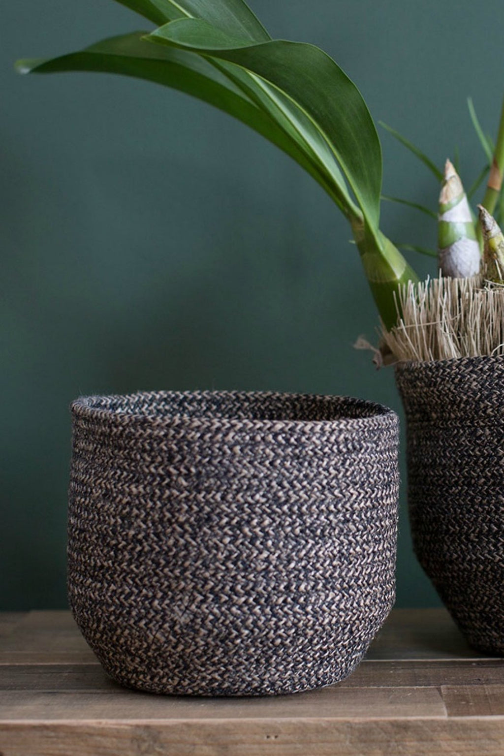 EcoVibe Style - Accent Decor Belen Basket