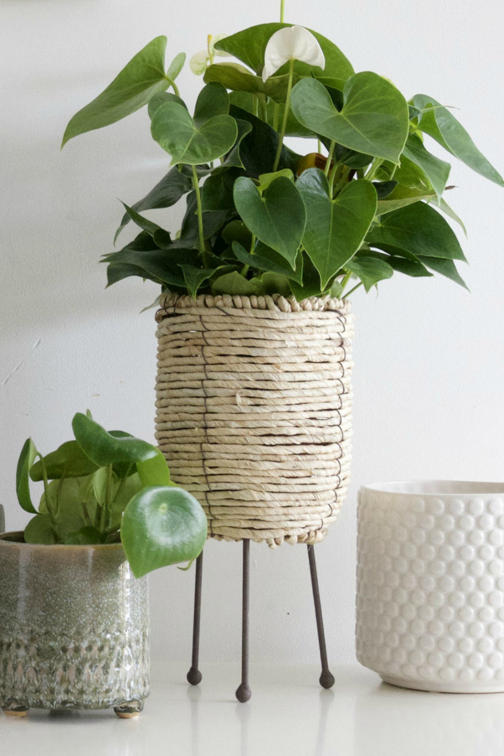 Corn Rope Basket Plant Stand