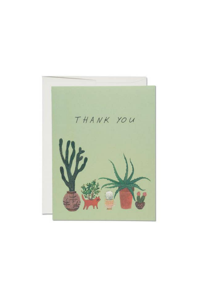 Red Cap Cards Thank You Aloe Greeting Card