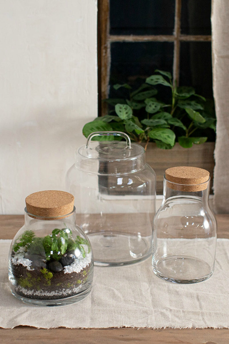 Accent Decor Amalia Terrarium Jar