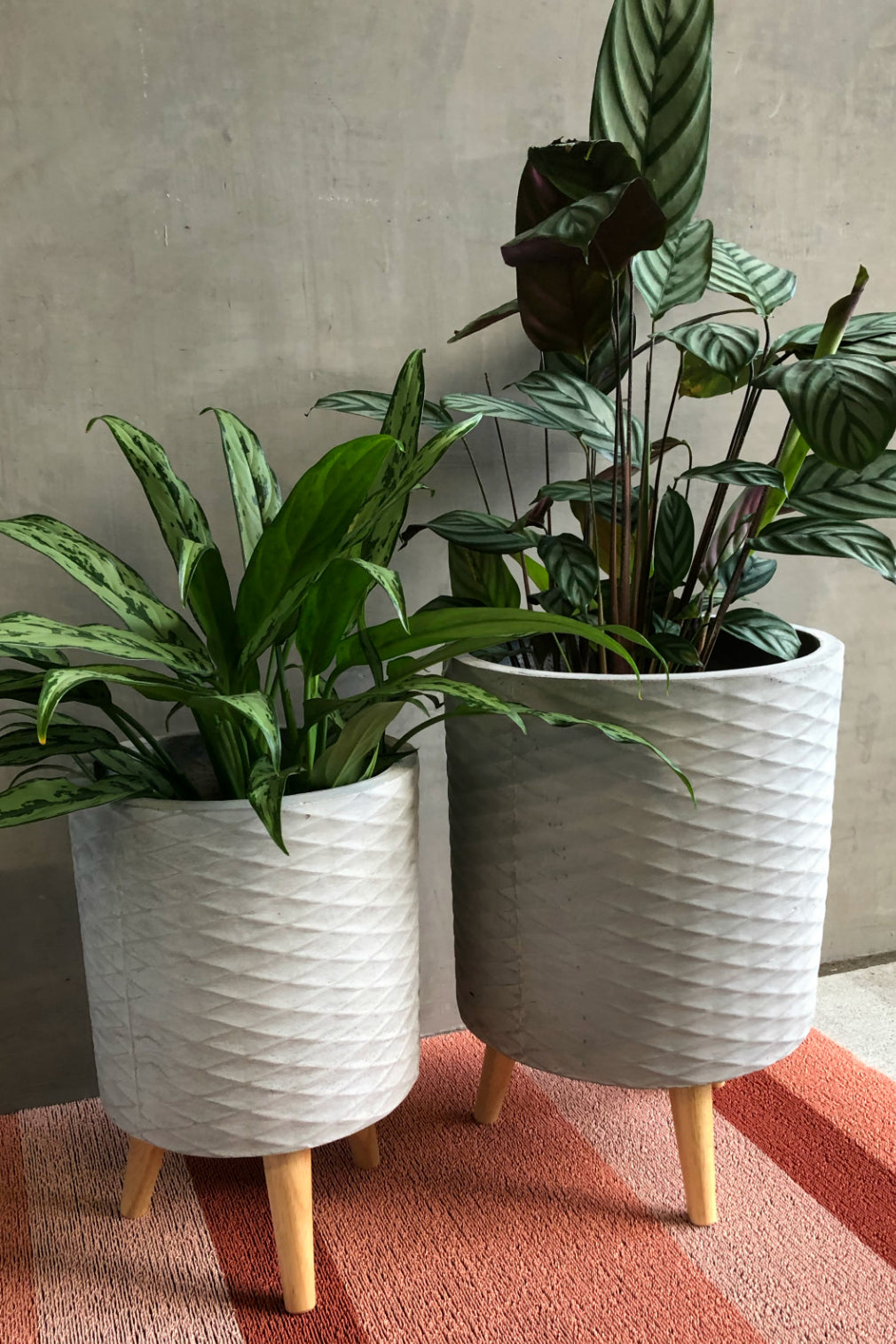 UMA Home Decor Textured Cylinder Cement Fiber Clay Planter w/Wood Legs