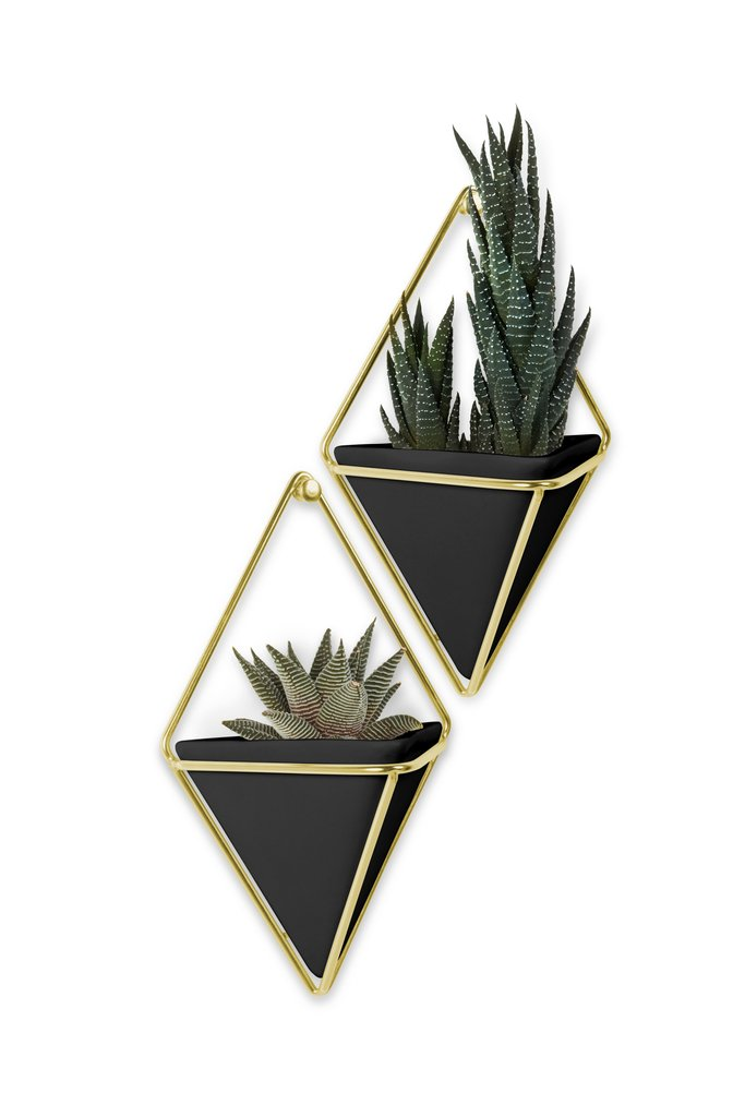 Umbra Trigg Small Geo Wall Display Set