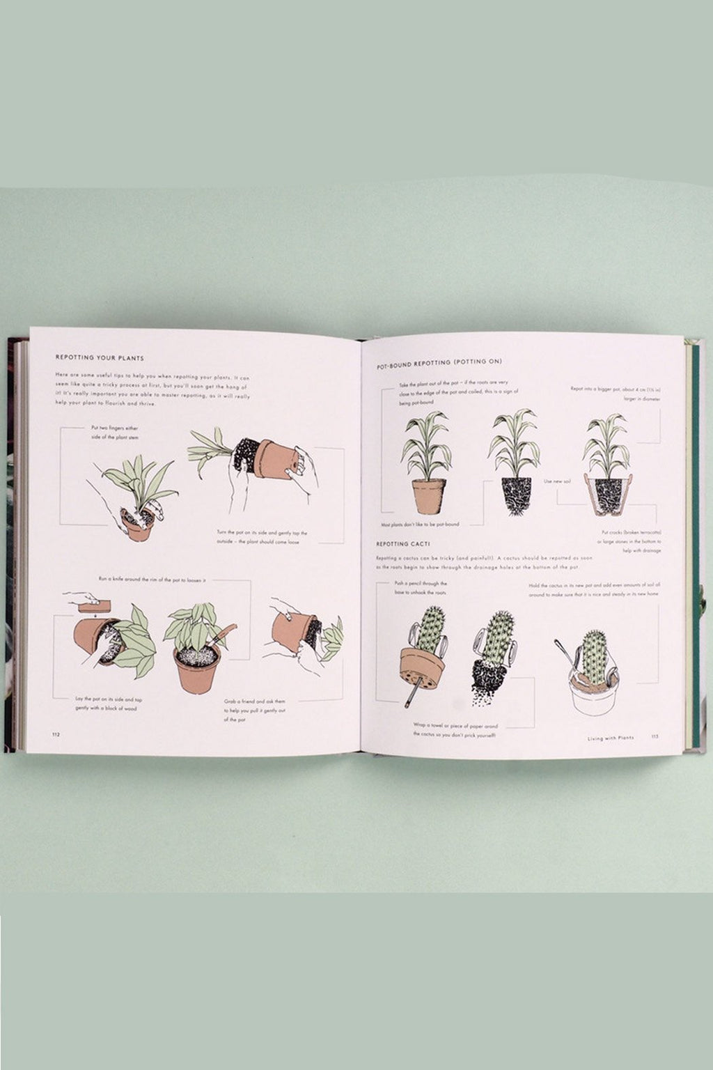 EcoVibe Style - Living with Plants: A Guide to Indoor Gardening by Sophie Lee, Book